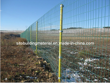 Euro Fence/Welded Wire Mesh Fence/Metal Wire Fence/Welded Wire Mesh Fence