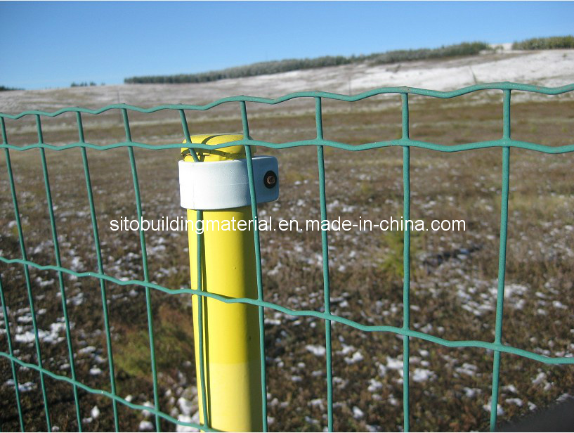 PVC Coated Fence/Welded Wire Mesh Fence/Euro Fence/Holland Fence