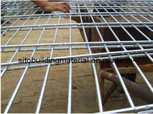 Double Wire Fencing/Welded Wire Mesh Fence/Fence Panel/Wire Mesh Fence/Wire Mesh Fence Panel