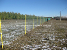 Holland Welded Wire Mesh/Welded Wire Mesh Fence/Euro Fence
