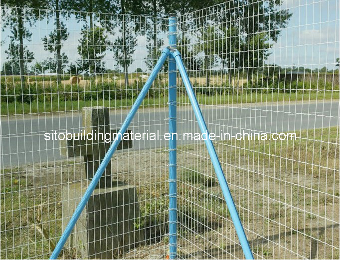 Euro Fence/Welded Wire Mesh Fence/Wire Mesh Fences